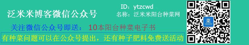 泛米米博客微信公众号(ID:ytzcwd)