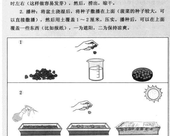 阳台种菜一本就GO.pdf电子书下载4.png